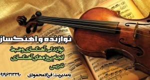 نوازنده و اهنگساز در تهران