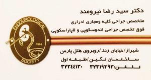 دکتر سید رضا نیرومند حسینی در شیراز