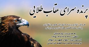 پرنده سرای عقاب طلایی در یزد