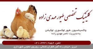 کلینیک تخصصی طیور مهدی زاده در تبریز