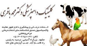 کلینیک دامپزشکی دکتر محمد باقری در مشهد
