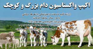 کلینیک دامپزشکی موسوی نژاد در اهر