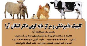 کلینیک دامپزشکی و مرکز مایه کوبی دکتر اشکان آرا در داورزن