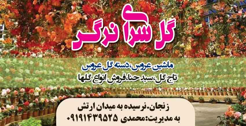 گل سرای نرگس در زنجان