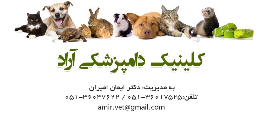 کلینیک دامپزشکی آراد در مشهد
