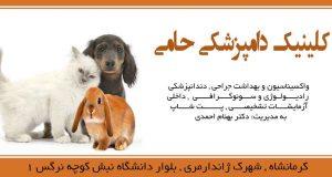 کلینیک دامپزشکی حامی در کرمانشاه