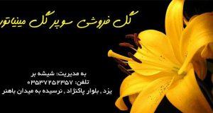 گل فروشی سوپر گل مینیاتور در یزد
