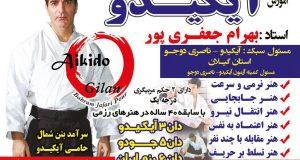 آموزش هنر دفاع شخصی آیکیدو بهرام جعفری پور