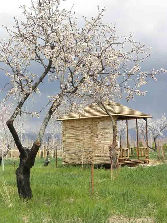 باغ گردشگری اورس در شاهرود5