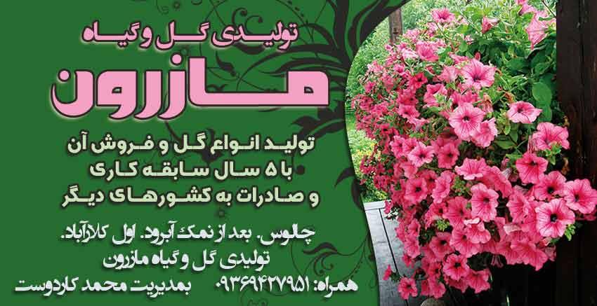 تولیدی گل و گیاه مازرون