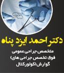 دکتر احمد ایزدپناه در شیراز