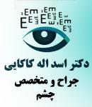 دکتر اسد اله کاکایی
