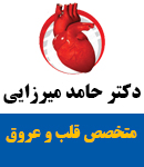 دکتر حامد میرزایی در صفادشت