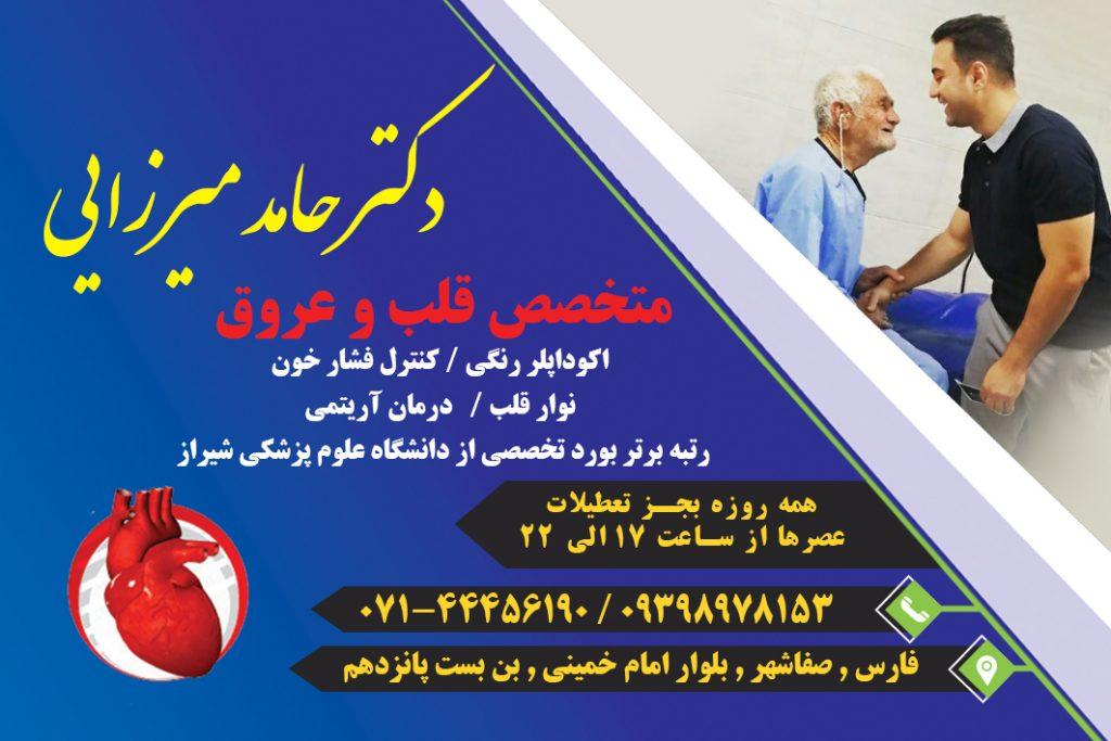 دکتر حامد میرزایی در صفاشهر