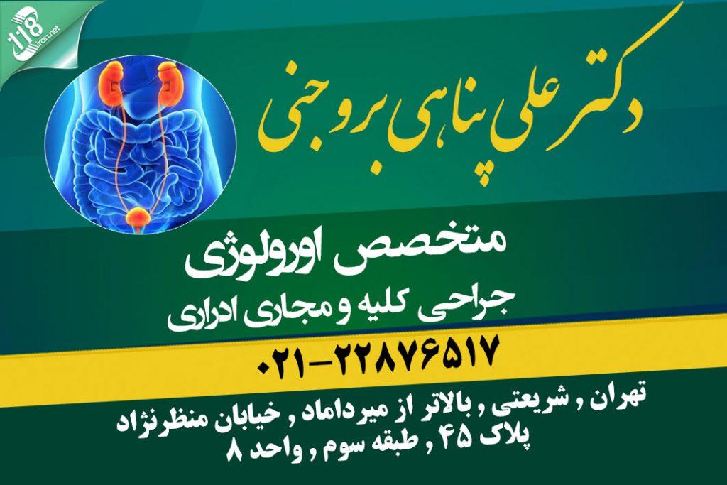 دکتر علی پناهی بروجنی در تهران