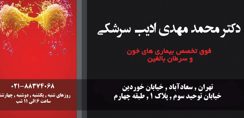 دکتر محمد مهدی ادیب سرشکی در تهران