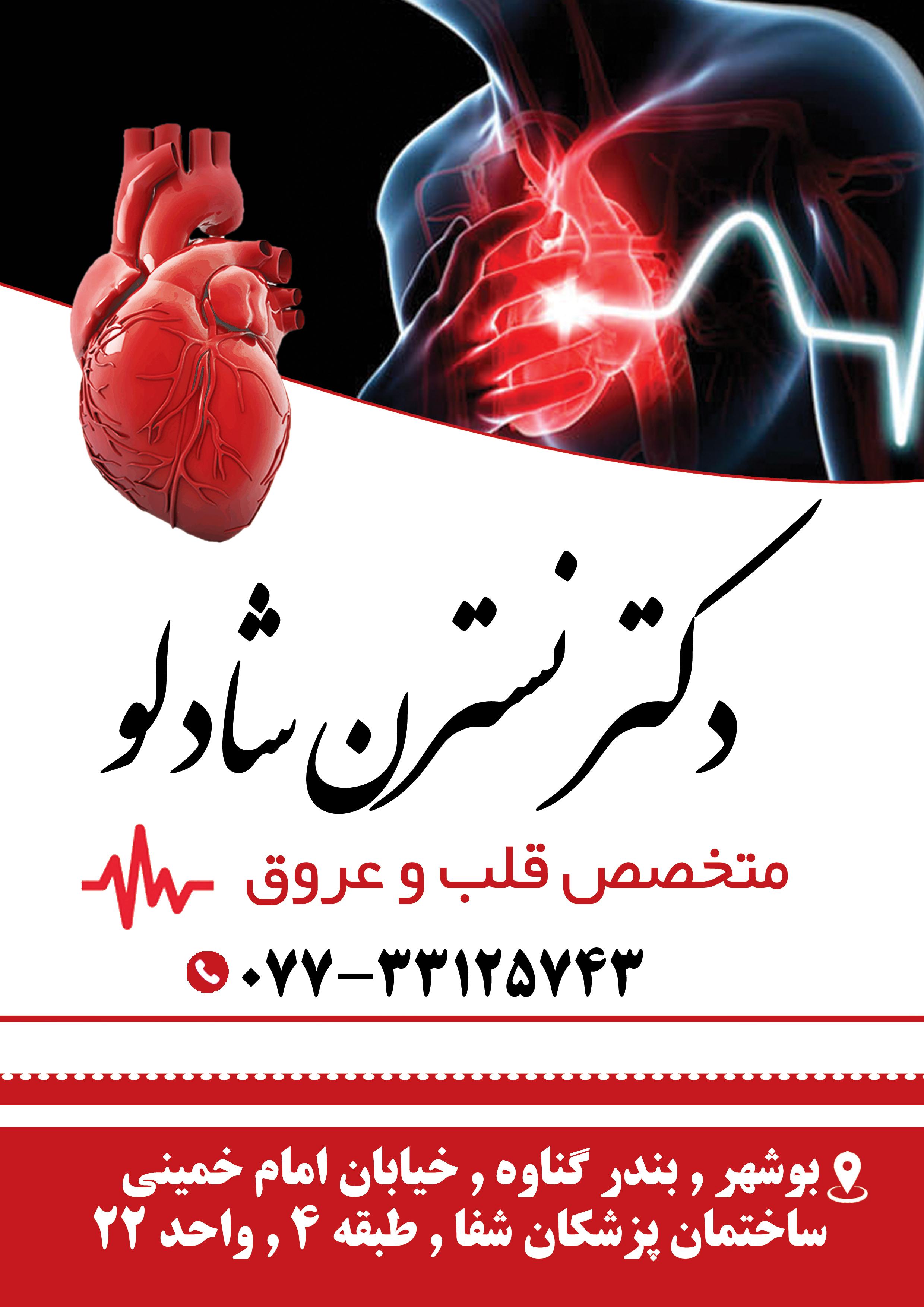دکتر نسترن شادلو در بوشهر
