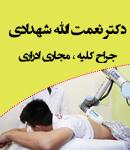 دکتر نعمت الله شهدادی در کرمان