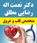 دکتر نعمت اله رضایی مطلق در بوشهر