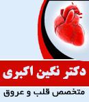 دکتر نگین اکبری در گرگان