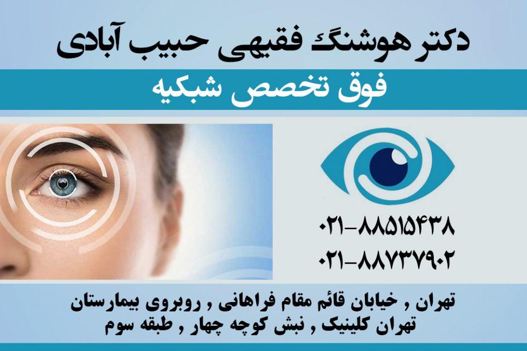 دکتر هوشنگ فقیهی حبیب آبادی در تهران