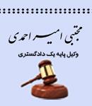 مجتبی امیر احمدی