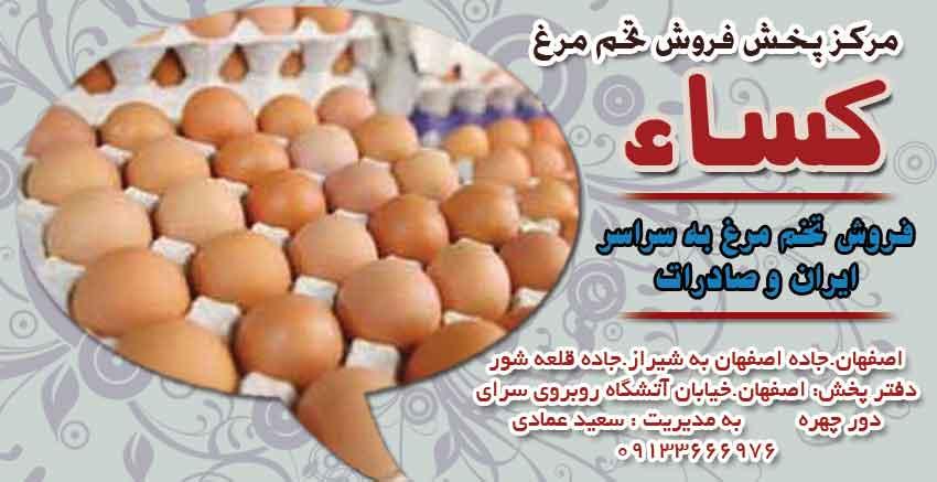 مرکز پخش فروش تخم مرغ کساء در اصفهان