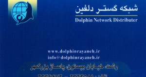 دلفین رایانه