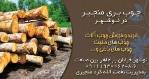 چوب بری منجیر در نوشهر