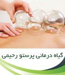 گیاه درمانی پرستو رحیمی در تهران